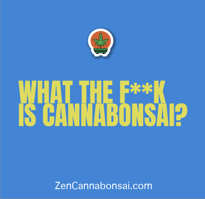 What Is Cannabonsai?