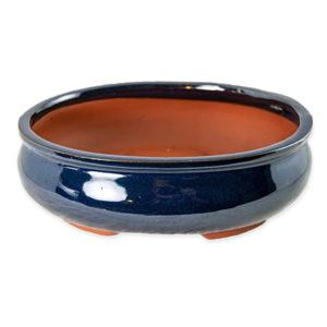 best pot for cannabonsai